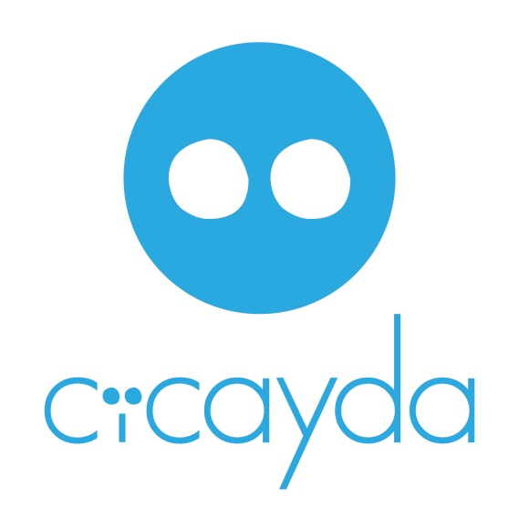 CEO: Cicayda LLC extends Series B for growth, receives suitors